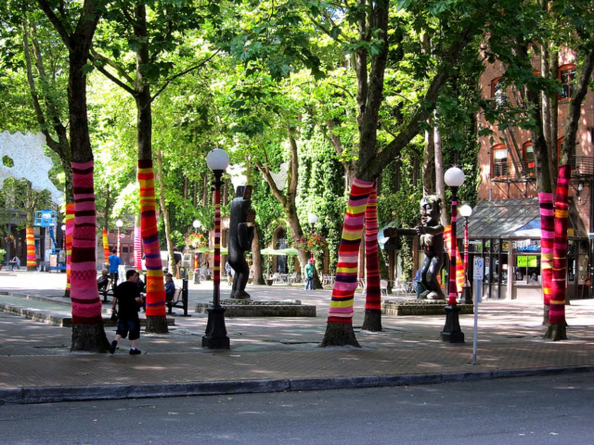 Yarn bombed trees in Seattle.