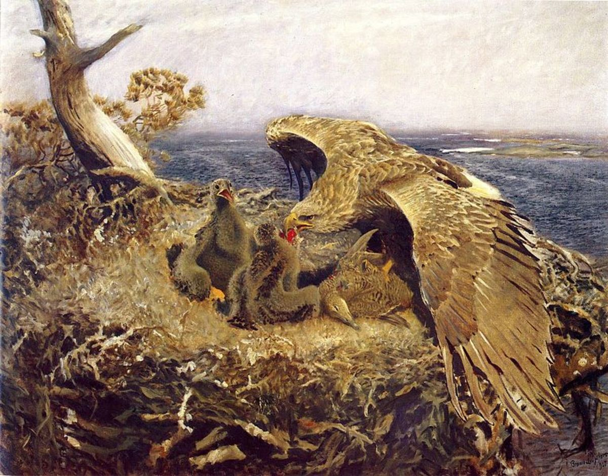 The Eagle and The Snake: a Short Story for Kids