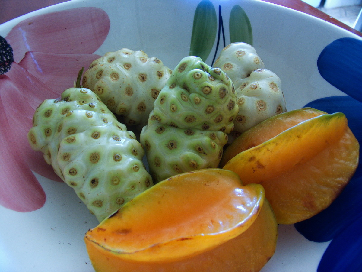 Fruit bowl with Noni fruit and carambola (star fruit)