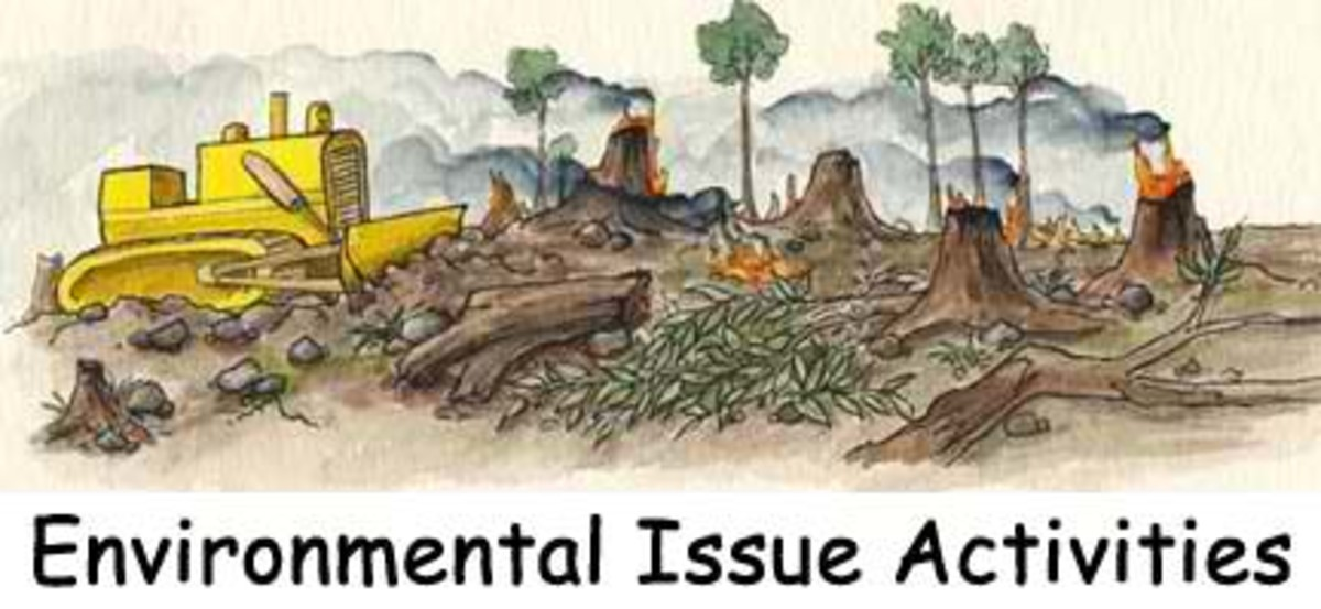 Environmental Issues Caused by Human Activities in the Biosphere