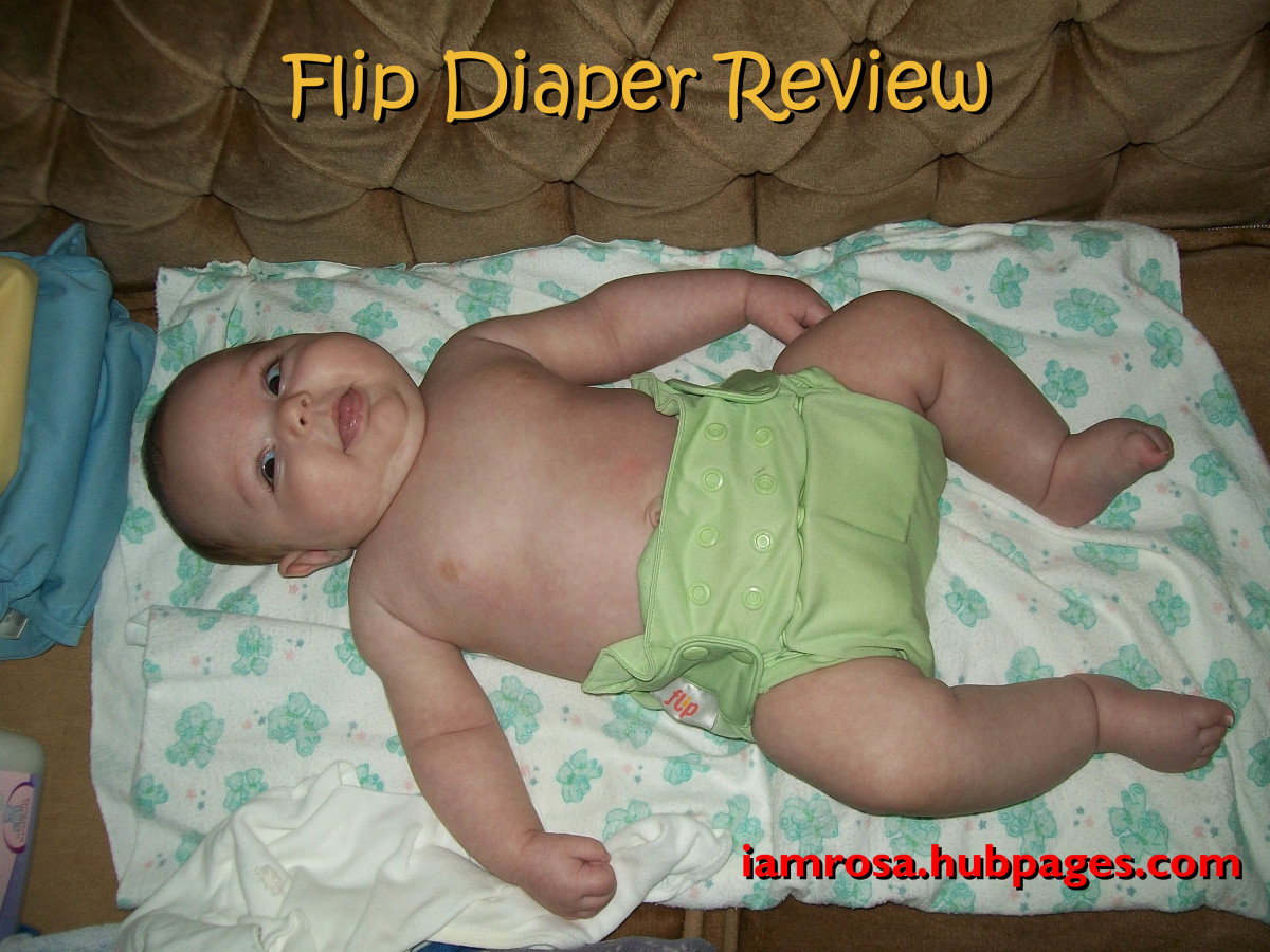 Flip Hybrid Cloth Diapers