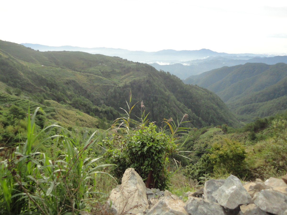 Viewing mountains on top of a mountain...Climbing Mt. Sto. Tomas located at Tuba, Benguet.