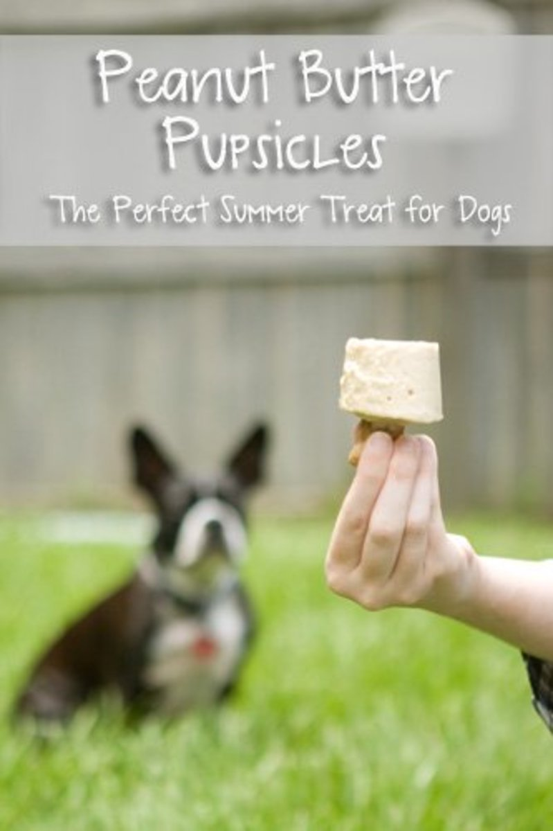 Peanut Butter Pupsicles Homemade Gourmet Dog Treats Recipe