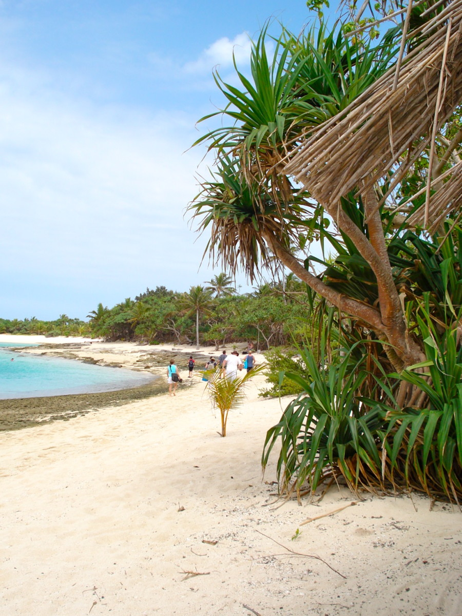What a Delight to Wander Along an Almost Deserted Tropical Beach