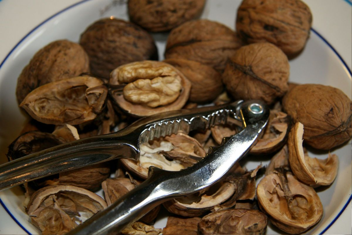 Walnuts on a plate with hinged nutcracker.