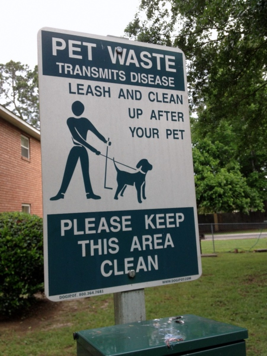 Picking up your dog's waste is more than just a common courtesy.