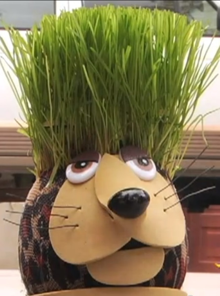 Chad is a very creative Grass Head found in a youtube video at the end.