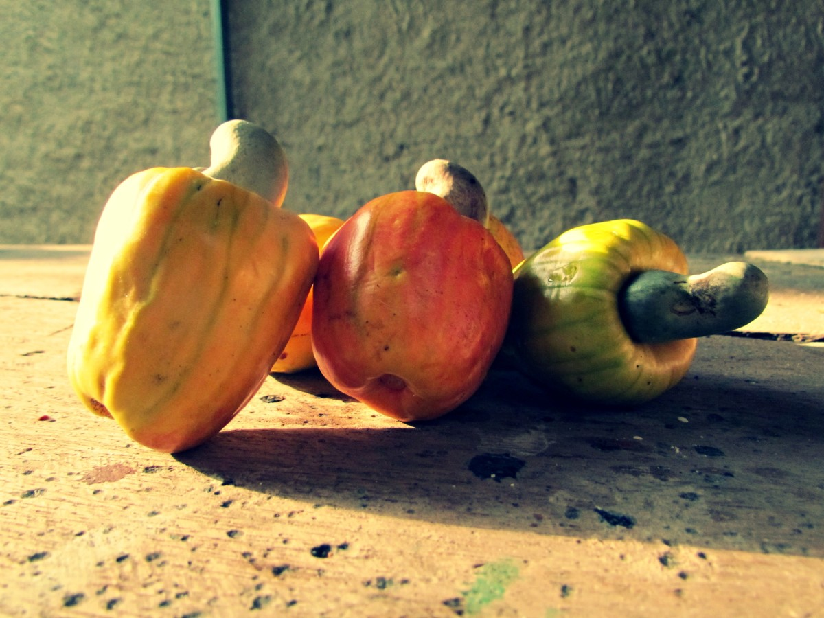 Nutritional Benefits of Costa Rican Cashew Fruit