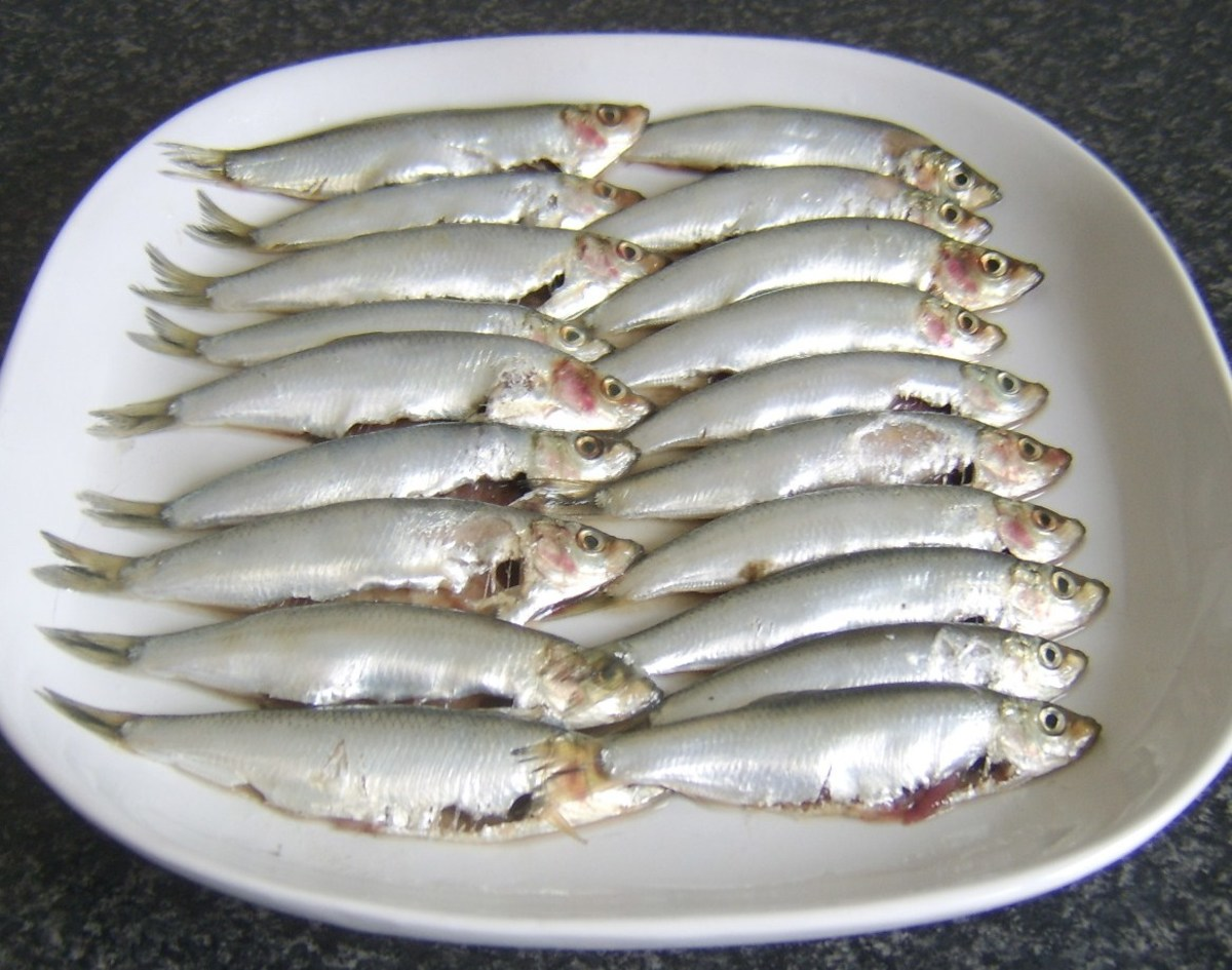 Freshly cleaned sprats ready for cooking