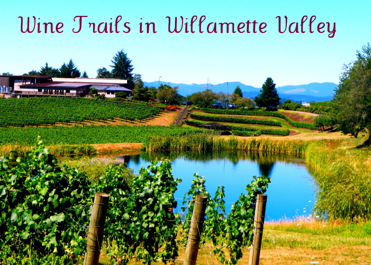 Oregon Willamette Valley – Wine Trails