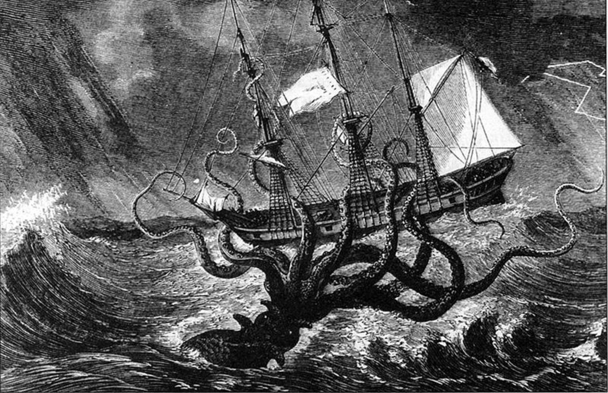 the myths and legends surrounding the giant squid Myths & legends part six kraken although the name kraken never appears in the norse sagas, there are similar sea monsters, the hafgufa and lyngbakr, both described in örvar-odds saga and the norwegian text from c 1250, konungs skuggsjá.