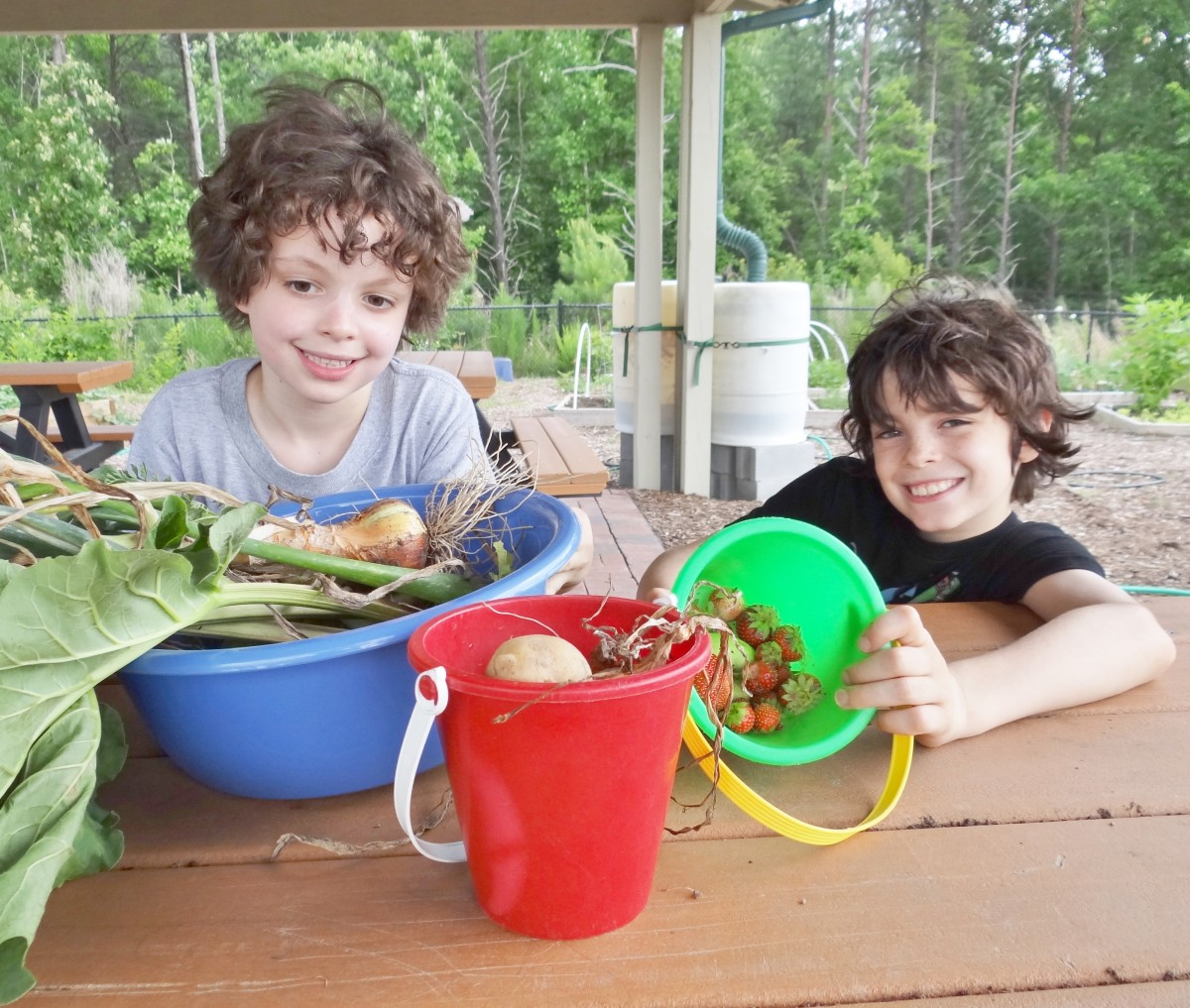 Involving kids in gardening is a great way to help them develop a love of fruits and vegetables