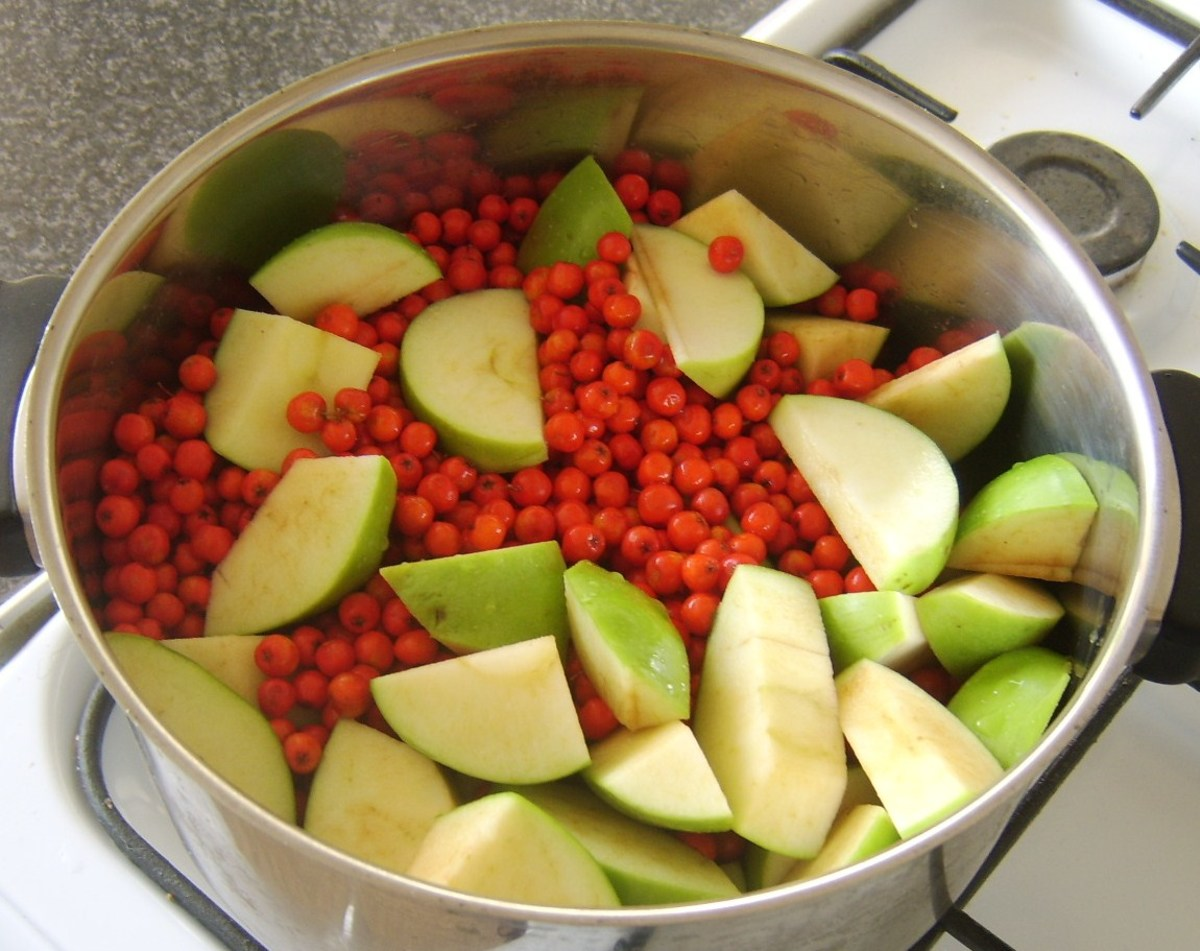 Rowan and Apple Jelly Recipe
