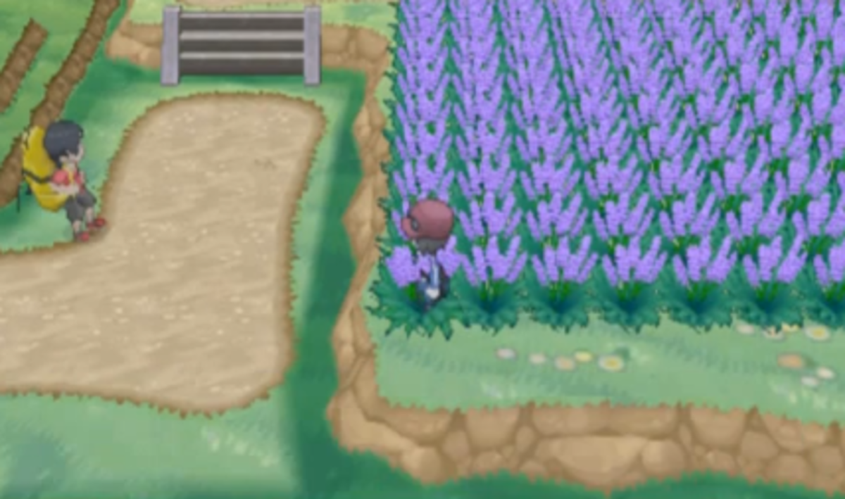 Pokemon X and Y Walkthrough, Part Seven: Route 5