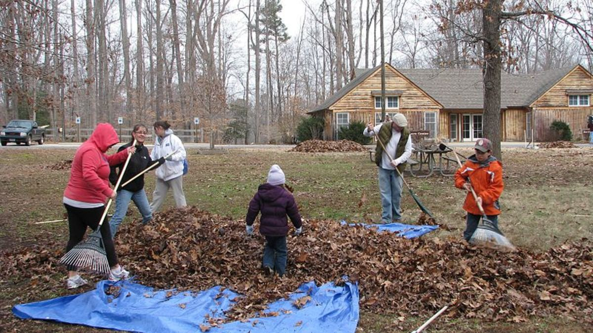 Volunteer Project.  Photo by VA State Park Staff