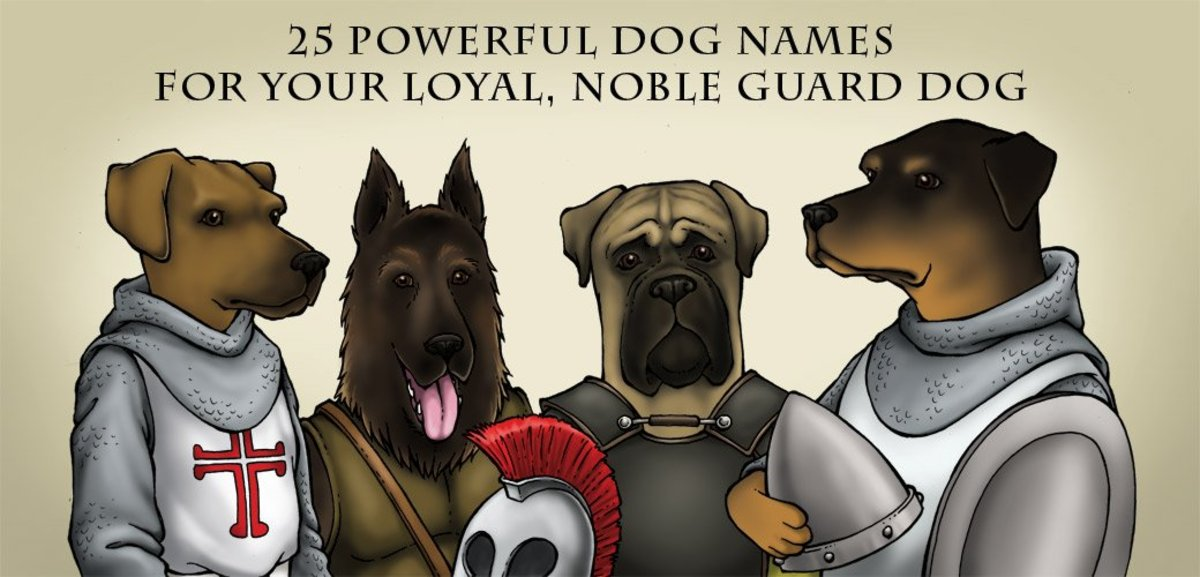 40 Powerful Dog Names for Your Loyal, Noble Guard Dog | PetHelpful