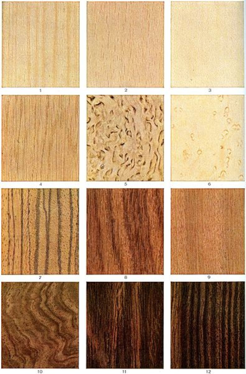 Is the tone of your guitar all about the wood? Many players say you betcha!