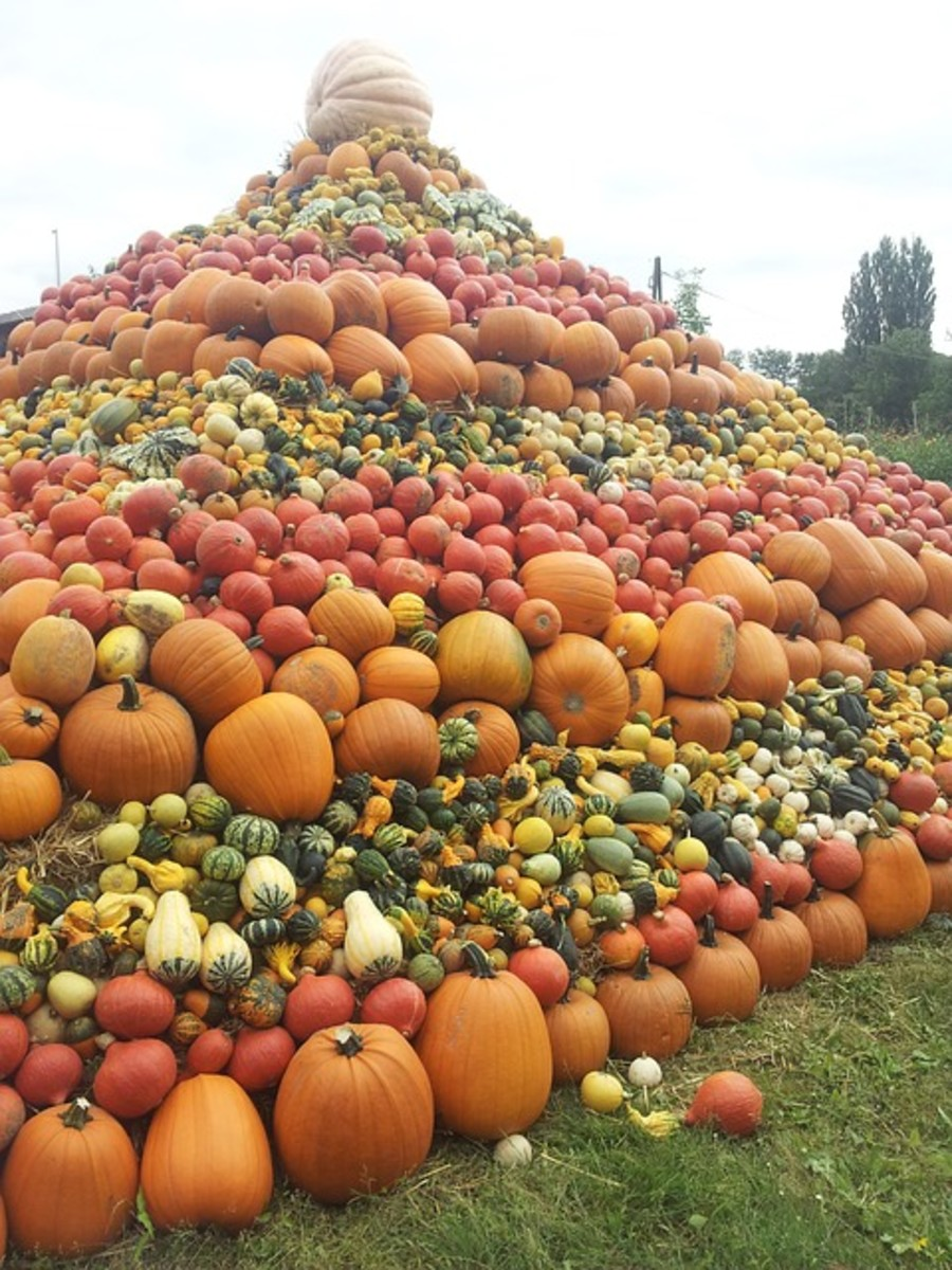 Be blessed with a bountiful harvest this year.