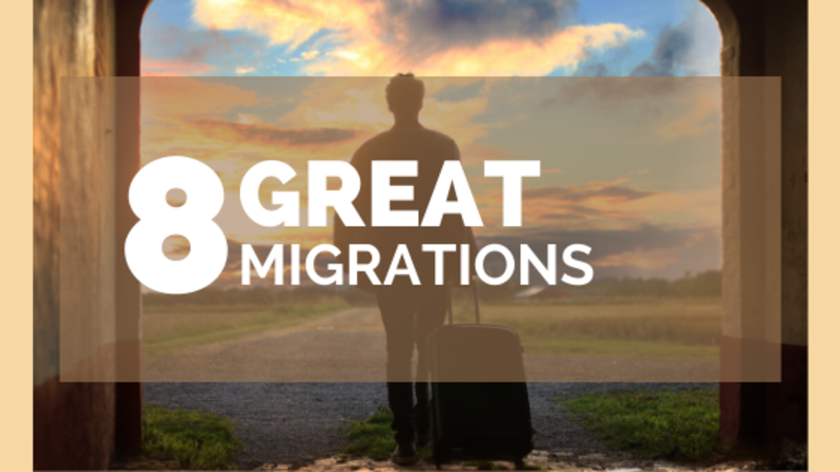 8 of the Greatest Migrations in History