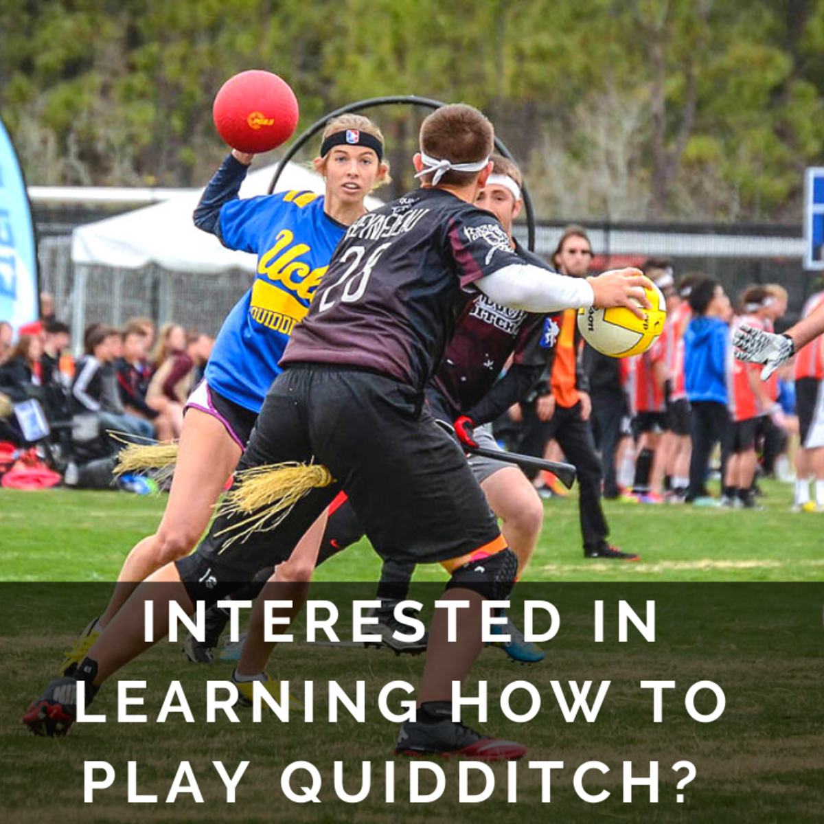 How to Play Quidditch From Harry Potter