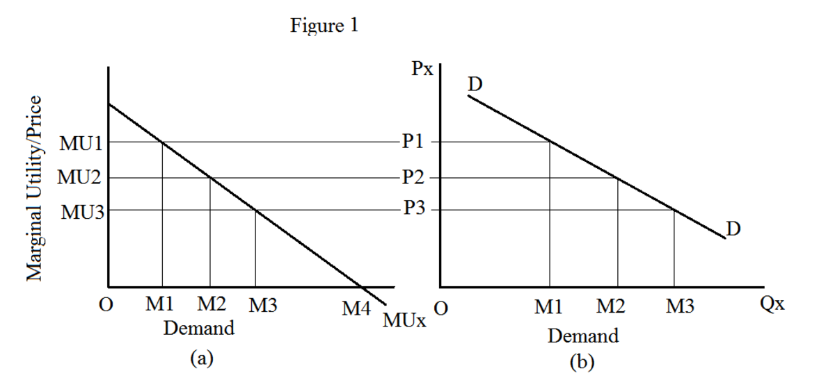 What does Law of Demand State? And What are the Exceptions to the Law of Demand?