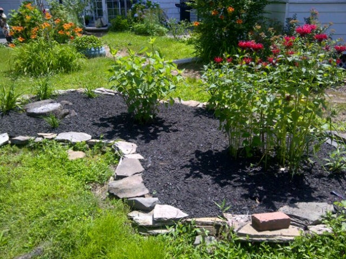 Mulch enhances your landscape