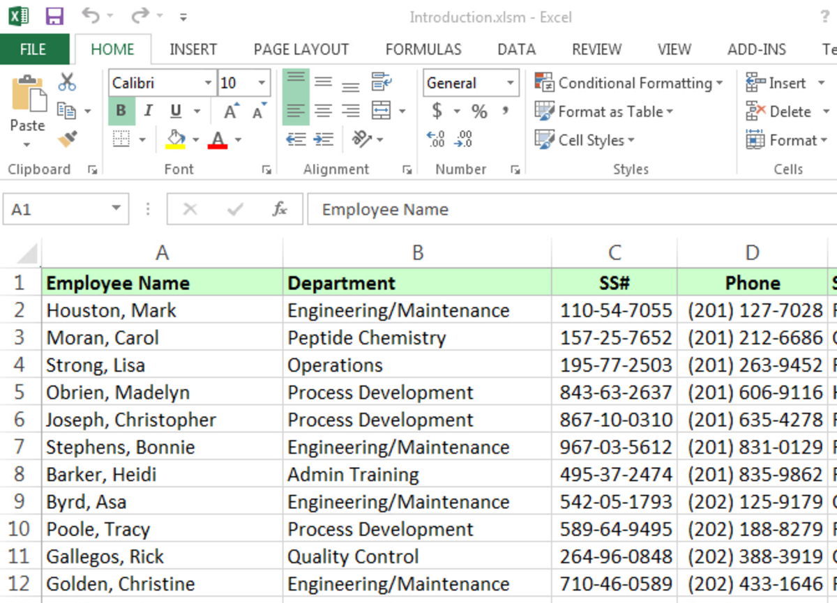 "An open Excel table called ""Inroduction.xls"""