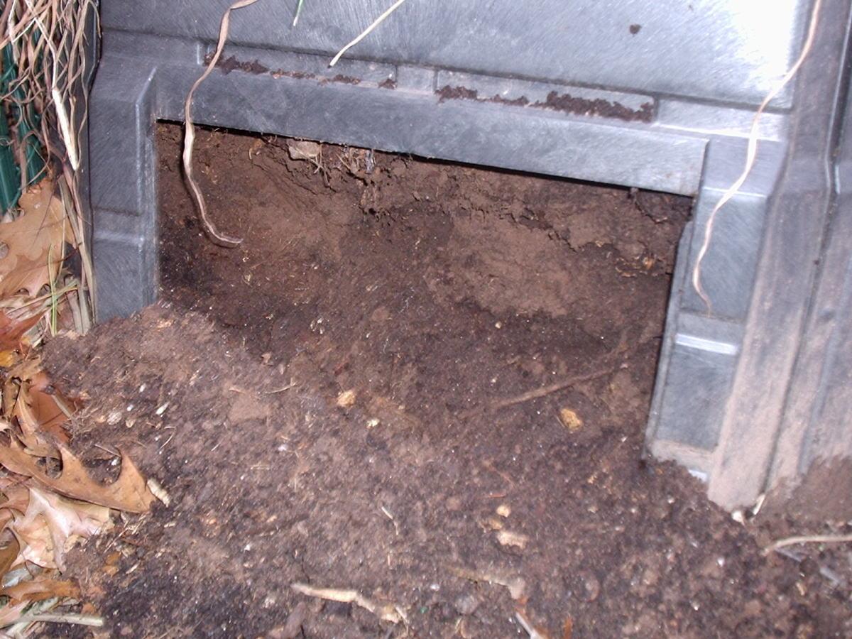 Compost - Black Gold