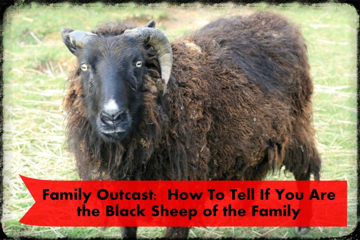 Family Outcast: How to Tell If You Are the Black Sheep