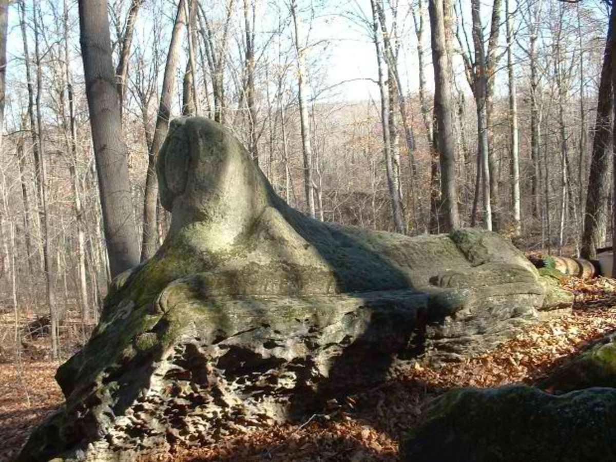 abiotic like stones via morgueFile