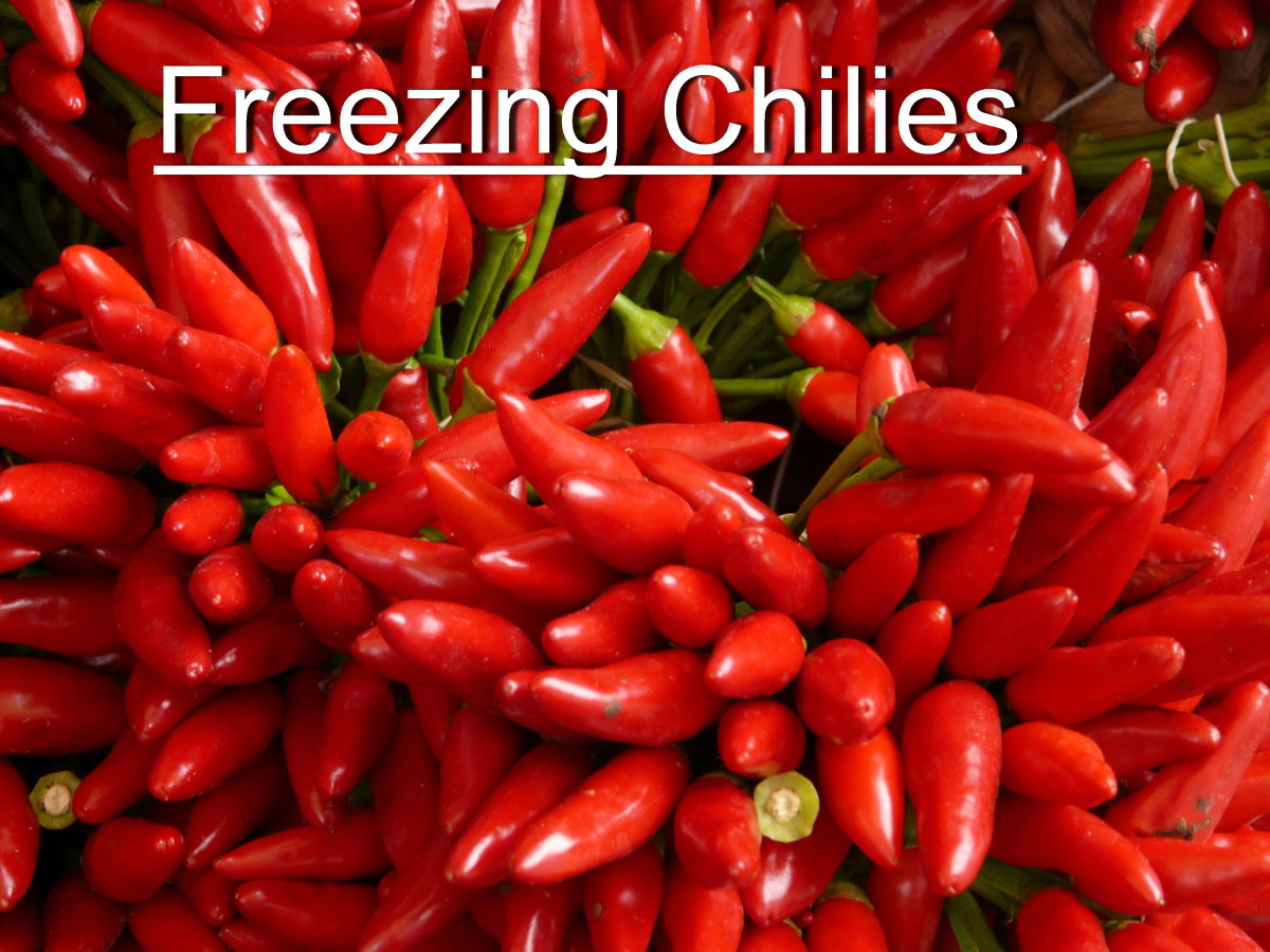 How to Freeze Hot Malagueta Chili Peppers