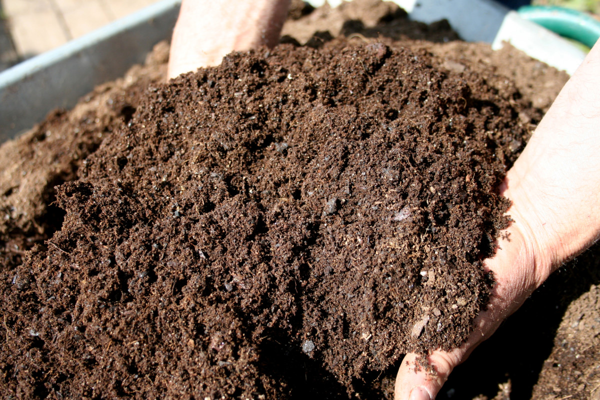 Create your own compost at home to save money and reduce waste.