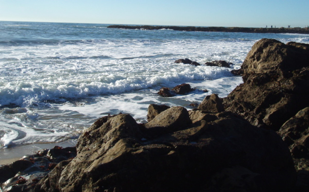 Coastal waters used to be great places for mermaids to live.
