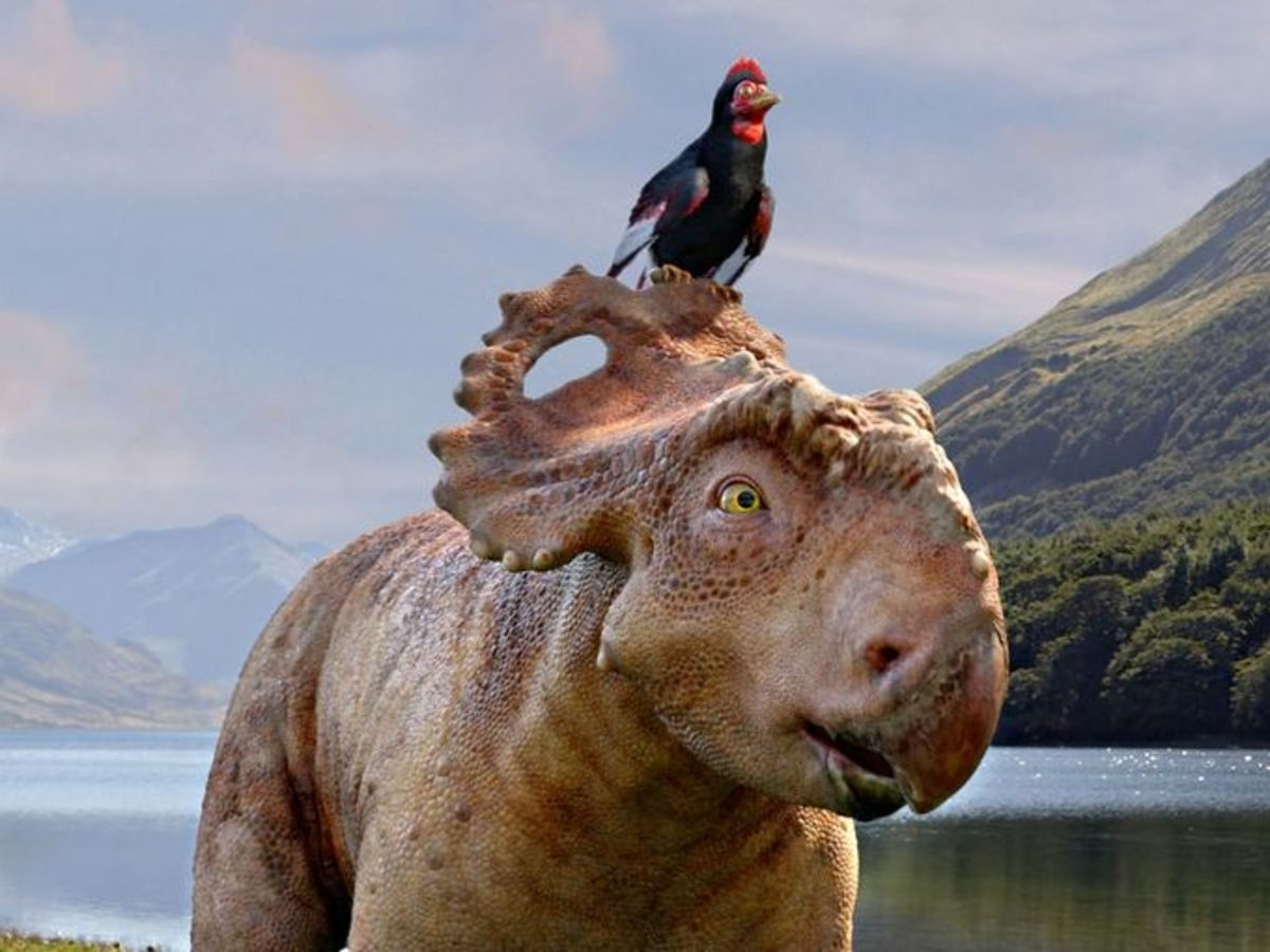 Walking with Dinosaurs: The Movie (Review)
