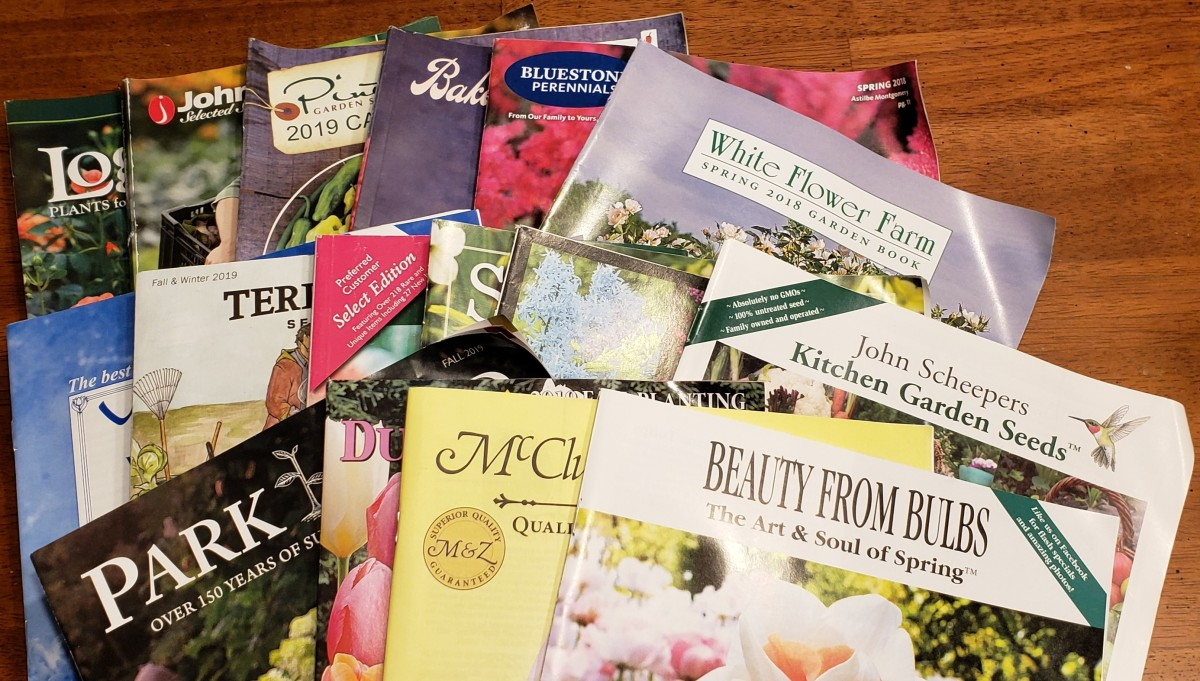 A sampling of catalogs sent to me.