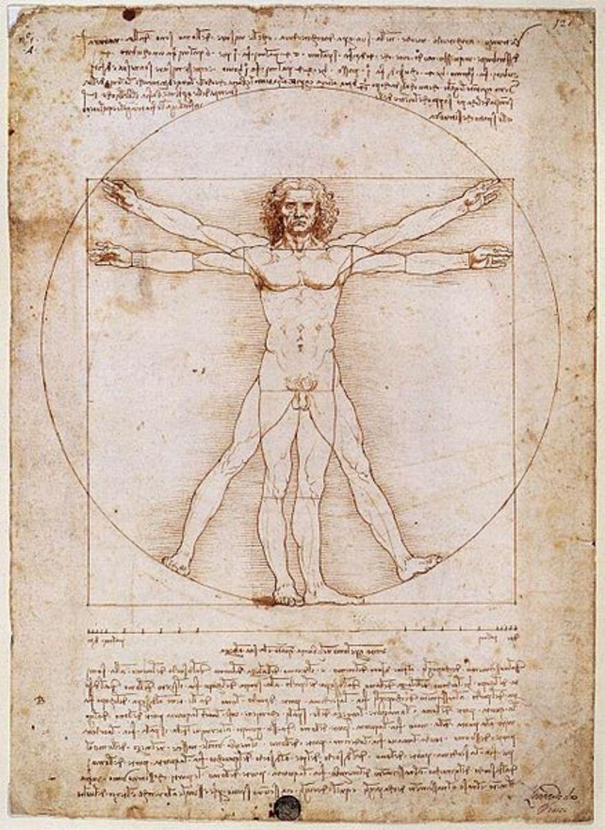 Leonardo Da Vinci's Vitruvian Man Explained