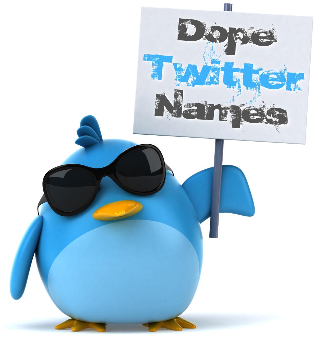 Twitter Name Ideas: 50 Dope Twitter Names | TurboFuture