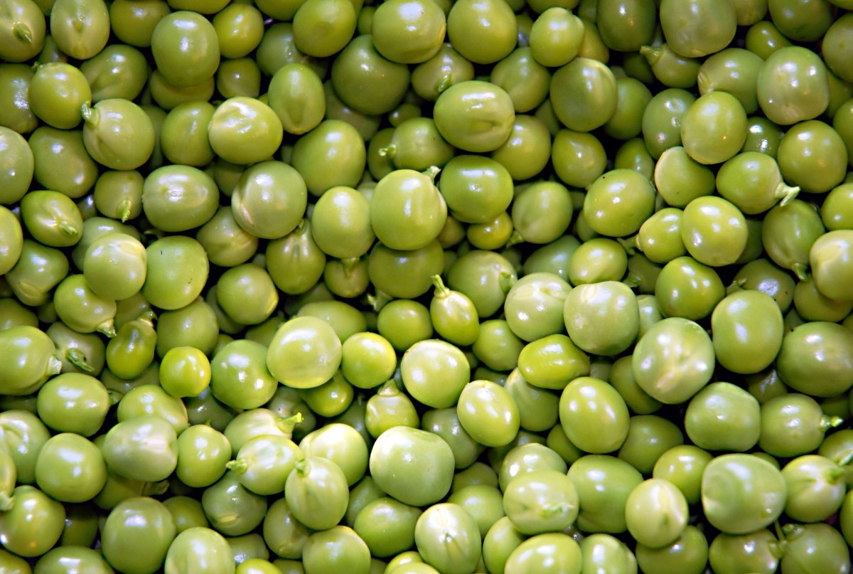 Green Peas - Varieties, Nutrition Facts, Recipes and Poems