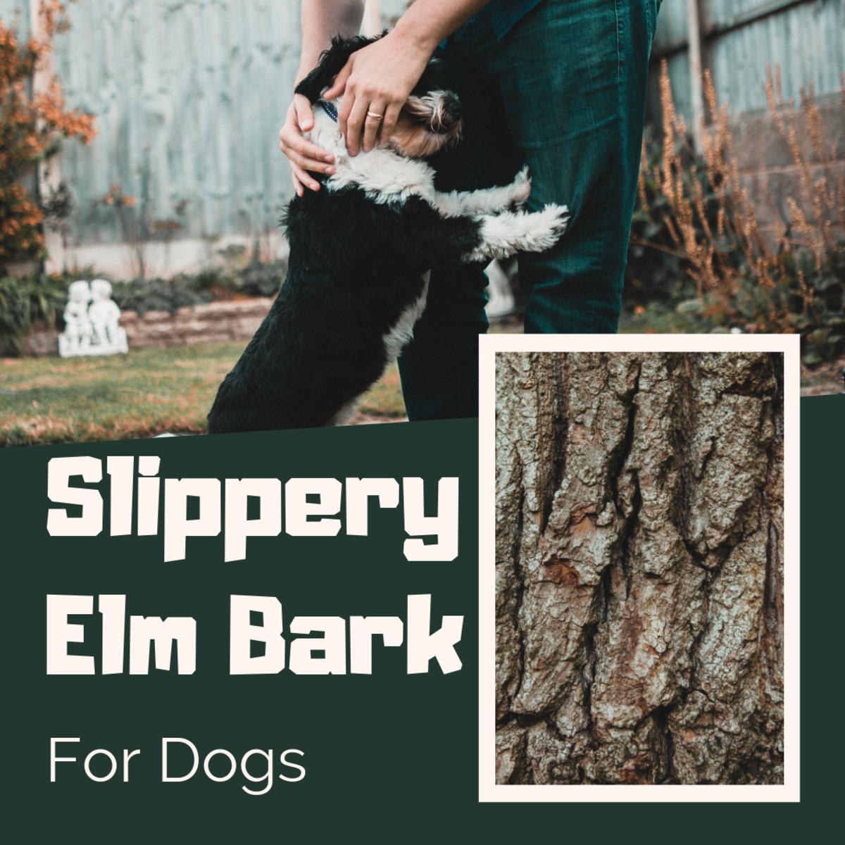 Slippery Elm Bark for Dogs