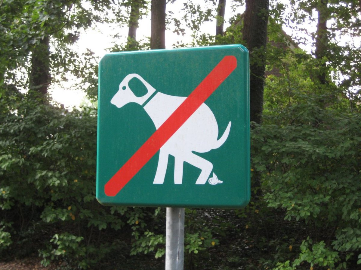 No pooping dog sign.