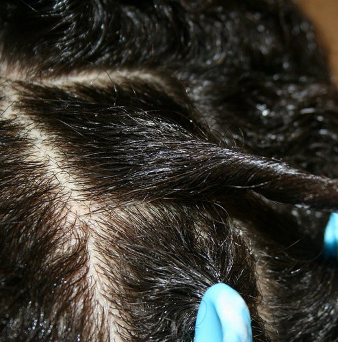 Steps to Growing Your Natural Hair and Retaining Length