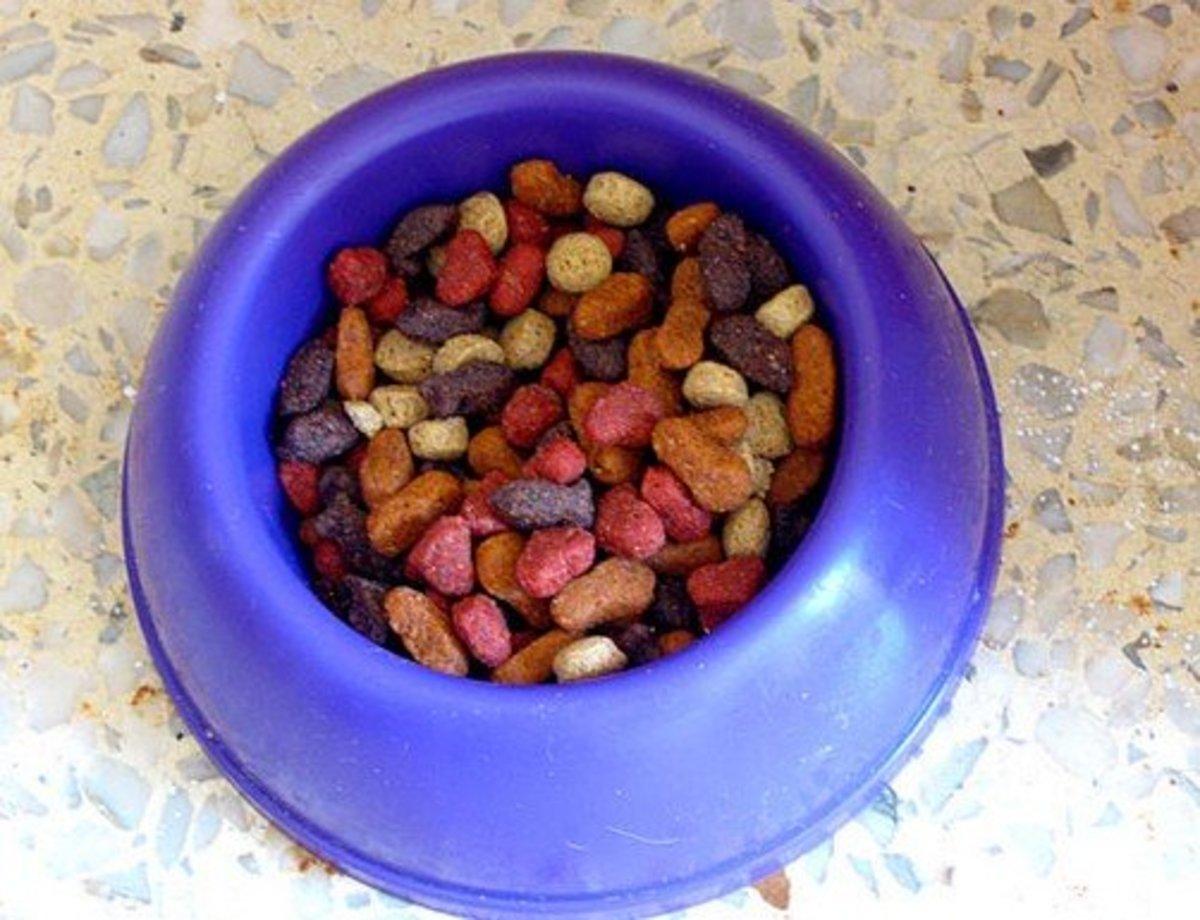 Dog cat food side effects