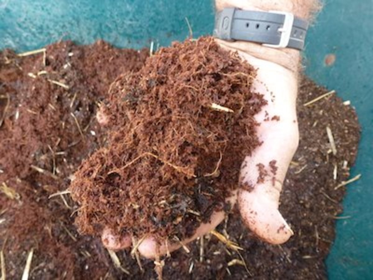 Choose coir or peat moss. Coir made from coconut shells is a readily renewable resource. Many growers prefer it over peat moss.