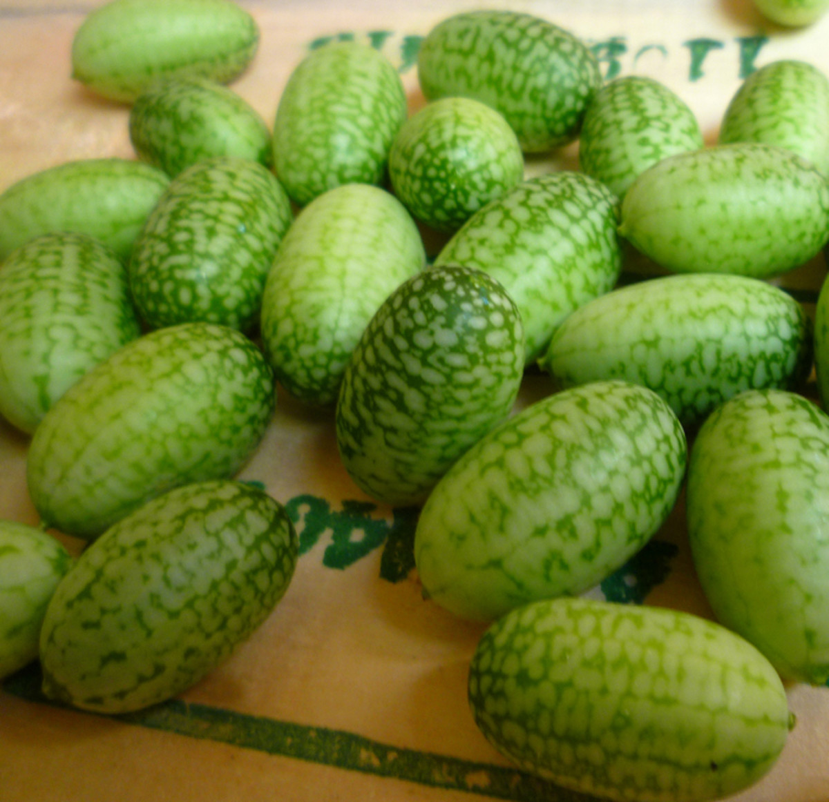Mouse melons. Also known as Mexican sour gherkins or cucamelons.