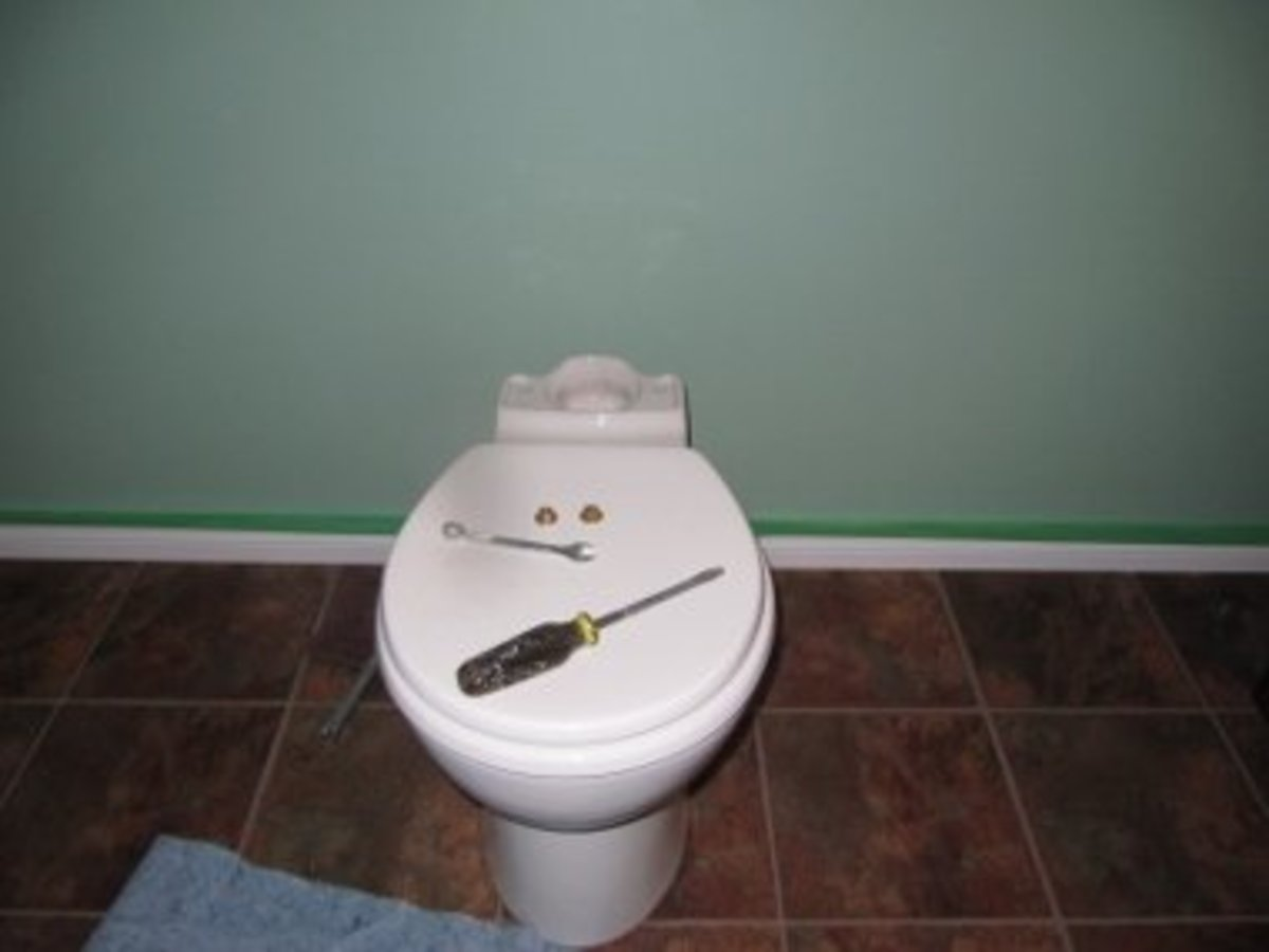 This is how your toilet should look after you take the tank off.
