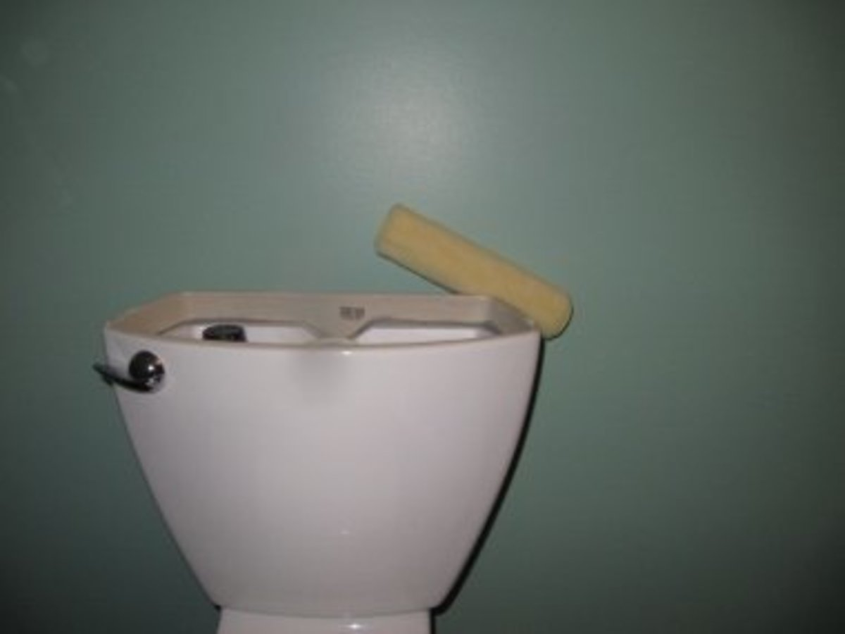 As you can see a paint roller will not go behind this toilet tank so the tank must be removed.