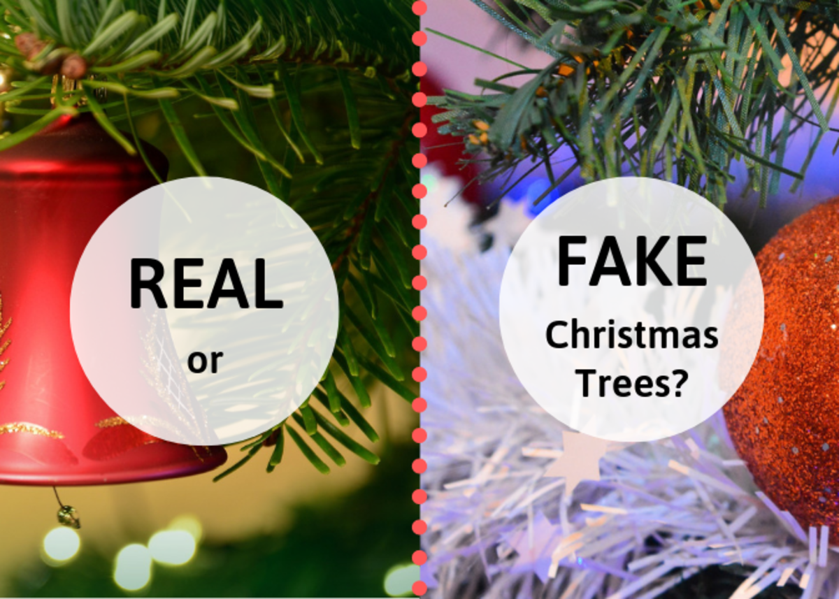 Which is better: a real, evergreen Christmas tree or an artificial tree? The answer depends on your family.