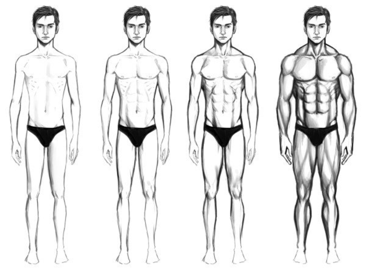 Nutrition and Workouts for Ectomorphs