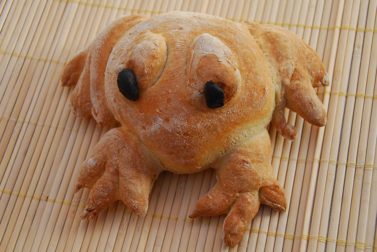 Baked bread frog made with Wright's Premium Bread Mix.
