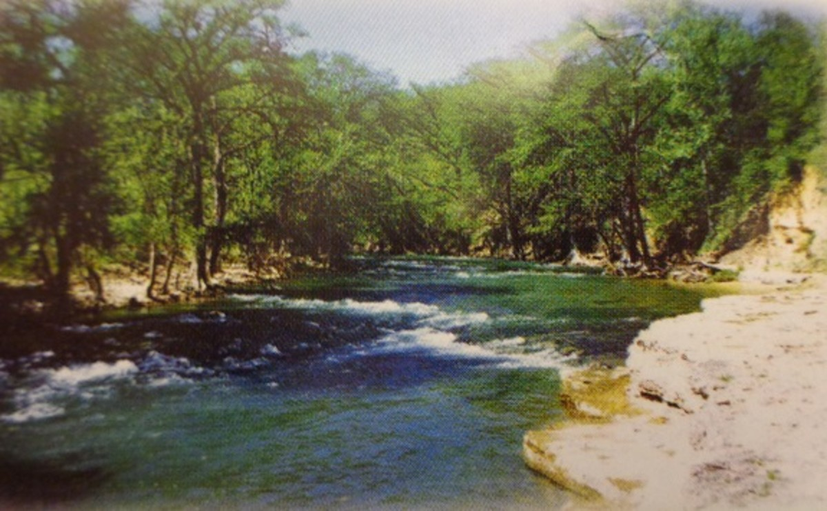 Guadalupe River by Lazy L&L Campground: Rainbow Trout Fishing